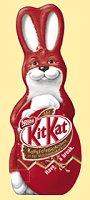 Kitkat Hase